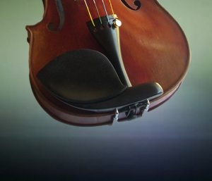 4/4 Guarneri with Guarneri GelRest attached